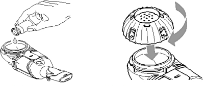 Figure 2a Figure 2b