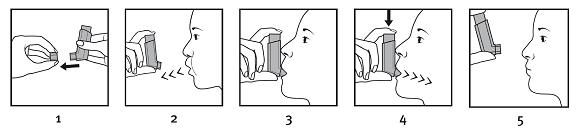 Hur du använder inhalatorn