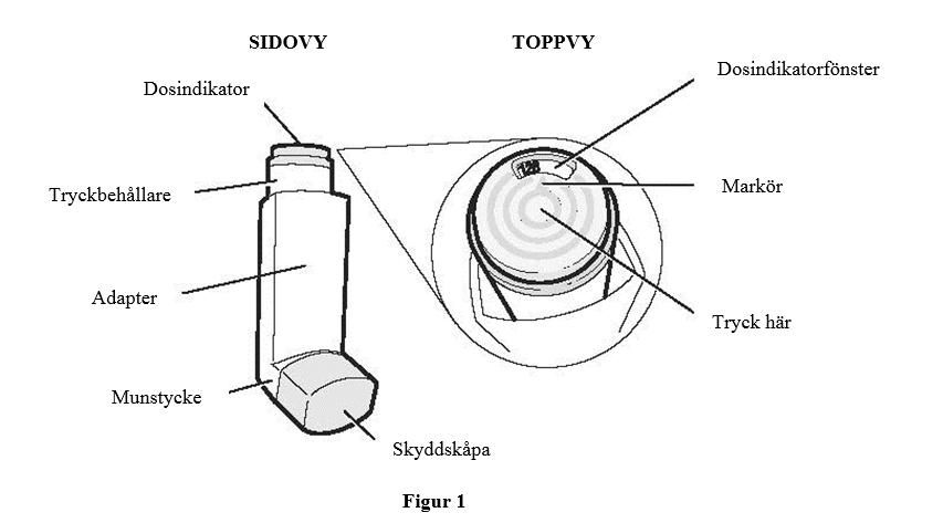 figur1