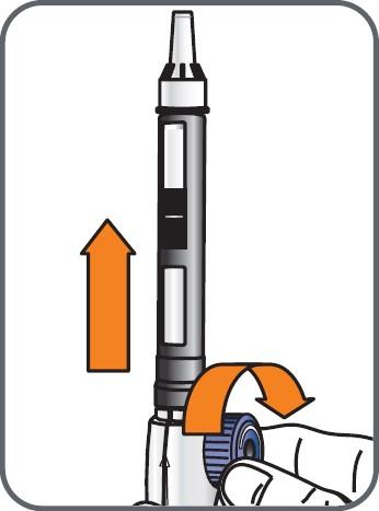 Med det yttre nålskyddet riktat uppåt, vrid hjulet långsamt medurs tills propparna inuti cylinderampullen inte längre rör sig och tills hjulet rör sig fritt.