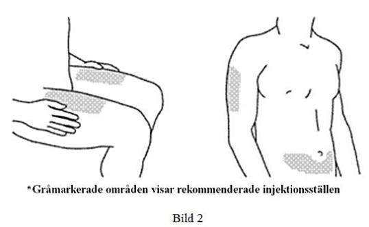 Stelara fig 2