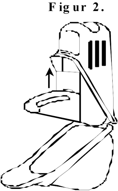 Figur 2.