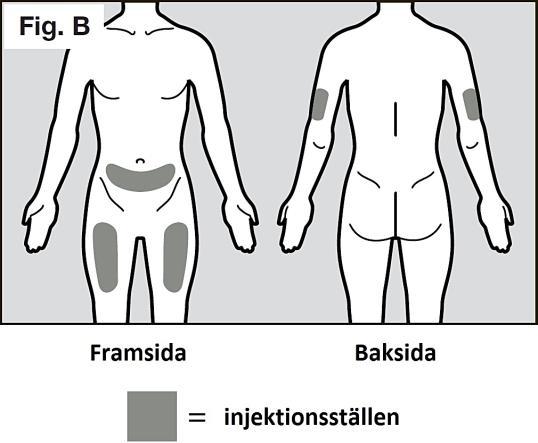 RoActmra Figur B
